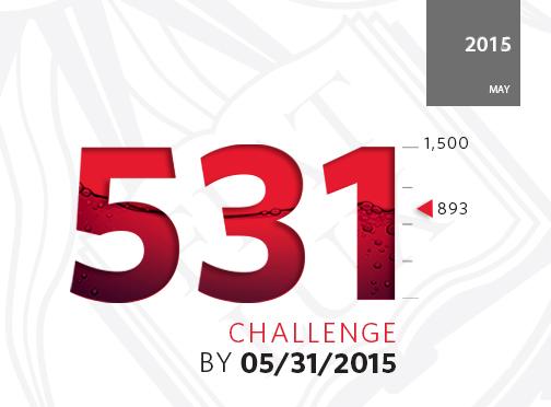 531 Campaign